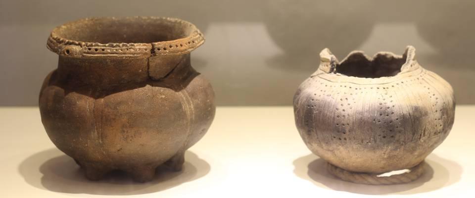 El Museo al Detalle: la historia del pasado a través de la ciencia